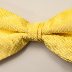 Portofino SunBeam Bow Tie