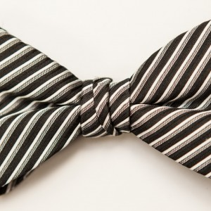 Synergy Black and White Bow Tie