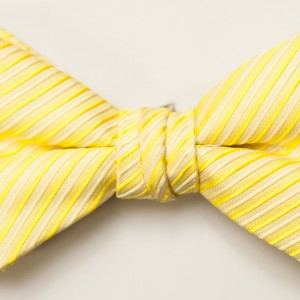 Synergy Bright Yellow Bow Tie