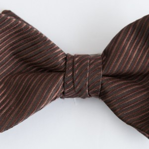 Synergy Cocoa Bow Tie