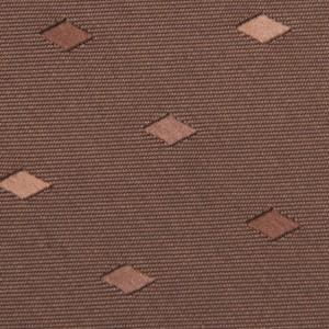 Synergy Cocoa Necktie