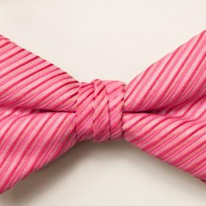 Synergy Fushcia Bow Tie