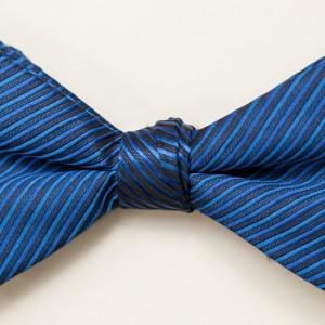Synergy Horizon Bow Tie