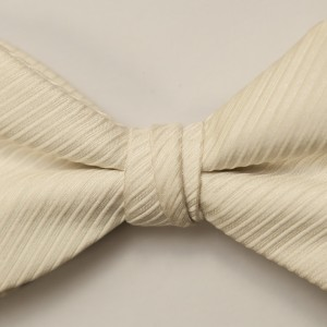 Synergy Light Ivory Bow TIe