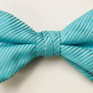 Synergy Malibu Bow Tie